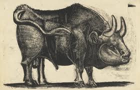 black bull 6 - 3rd picasso