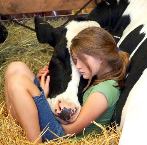 cute-girl-cow-face-friendship