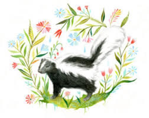 skunk 2 - resize 200