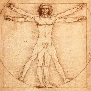 vitruvian man (trace of earth) 1