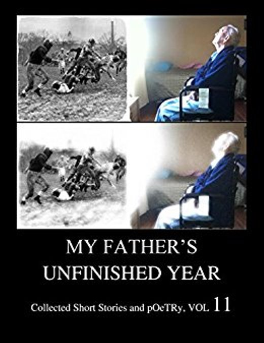 my-fathers-unfinished-year-amazon-cover-51ithnas9ml-_sx260_